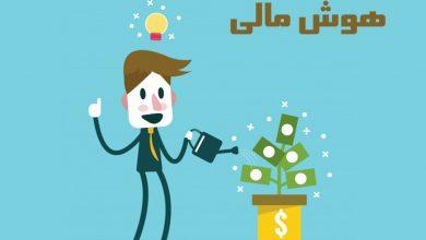 7 قدم ضروری برای توسعه هوش مالی